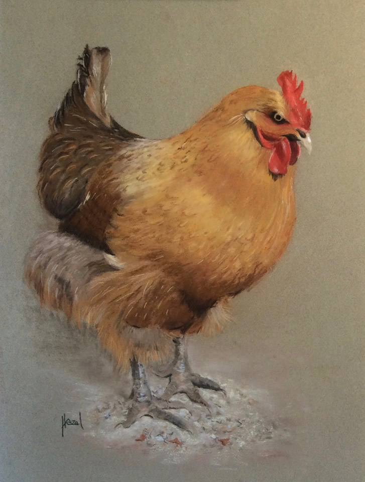 Cheeky Chicken | Pastel Drawing Artwork