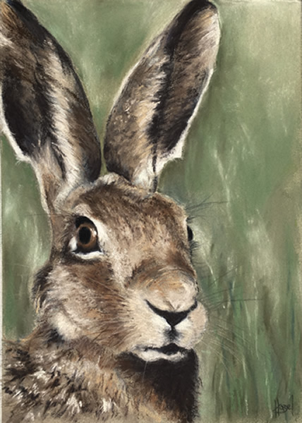 Hare Stare | Limited Edition Print | £70